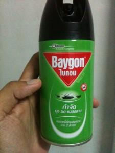 Anti-Insekten-Spray für das Zimmer