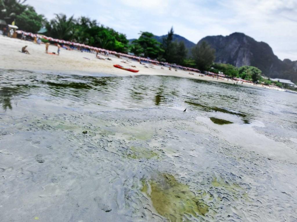 Urin Strand Phi Phi